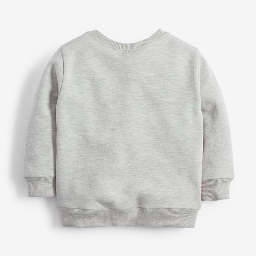 Little Maven 2021 Autumn Boy Brand Clothes Children Hoodies & Sweatshirts Boy Cotton Sweater Animal Print Kids Sweatshirts 51775 4