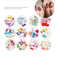 Dried Flowers 1box Mixed  Nail Art Decorations 3D Colors Natural Floral UV Gel Polish Nails Accessories Manicure