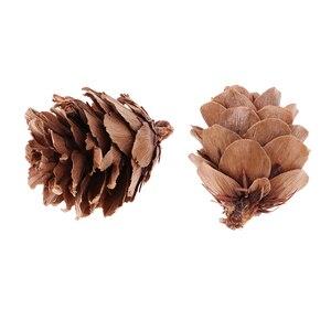 Image 5 - 120pcs Mini Decorative Pinecone Pine Cones Vase Bowl Filler Displays Decor