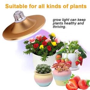 Image 2 - 光フルスペクトル phytolamp ランプ植物の花 E27 220 v 植物ライト屋内苗ガーデン温室照明