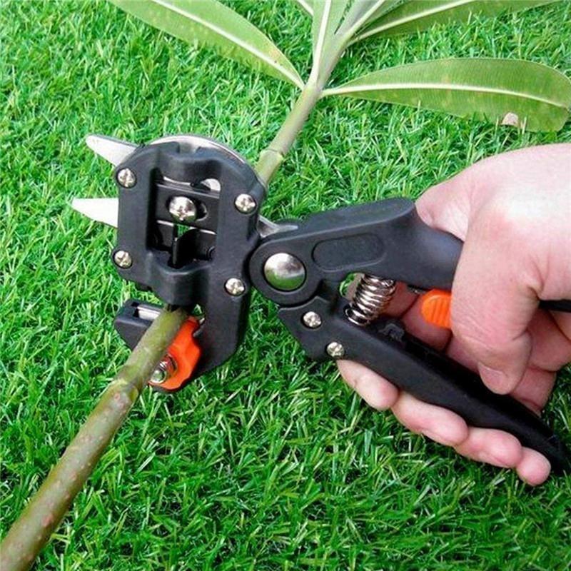 Scissor Shears-Boxes Branch-Cutter Secateur Grafting Pruner Garden-Grafting-Tool Fruit-Tree