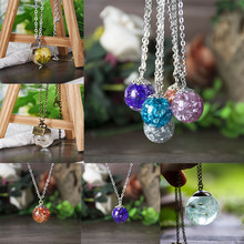 SEDmart Resin Best Friend Dry Flower Pendent Necklace Forwomen Real Dandelion Statement Long Chain Sweater Jewelry Gifts(China)