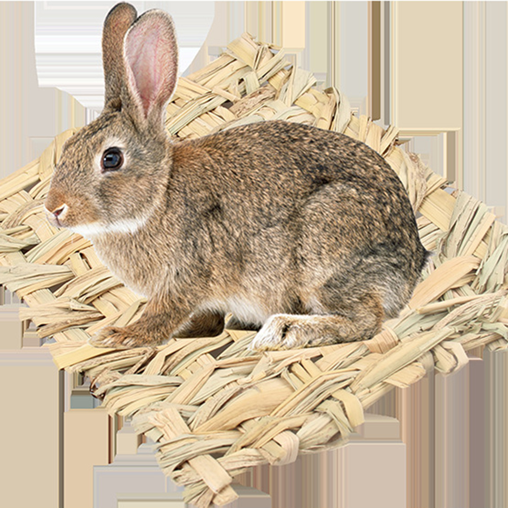Cute Straw Mat Pet Hamster Rabbit Chewing Toy Grass Preparation Pad Small Animal Rat Guinea Pig Pet Fun Toy