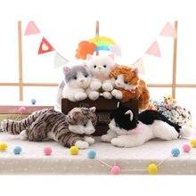 Chat en peluche mignon blanc noir 35-40cm, nouveau jouet en peluche doux animal cadeau pour enfants garçon fille