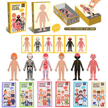 Kids Magnetic Human Body Cognitive DIY Puzzles Early Learning Educational Toy Montessori Funny Gift For Children Dressing Jigsaw