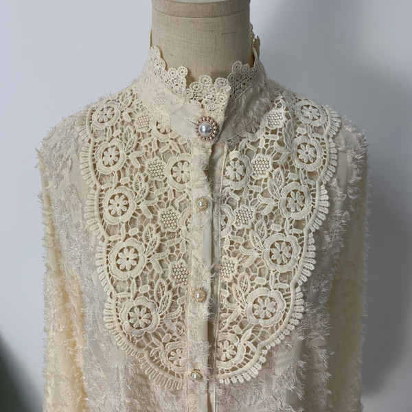 H170f787904254e1a90c5a655f3e39309x - Spring / Autumn Korean Stand Collar Long Sleeves Crochet Lace Button Blouse
