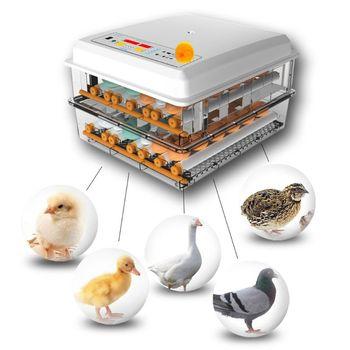 220V inkubator do jaj Brooder ptak przepiórka pisklęta wylęgarnia inkubator drób Hatcher Turner automatyczne narzędzia do inkubacji gospodarstw ue usa tanie i dobre opinie CN (pochodzenie) Birds Veggies Skewer Zwierzęta gospodarskie kura STAINLESS STEEL 10~30℃ app 27x24x18cm 10 63x9 45x7 09in