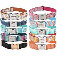 AiruiDog Dog Collar Adjustable Personalized Durable Nylon Free Engraved ID Name Boy