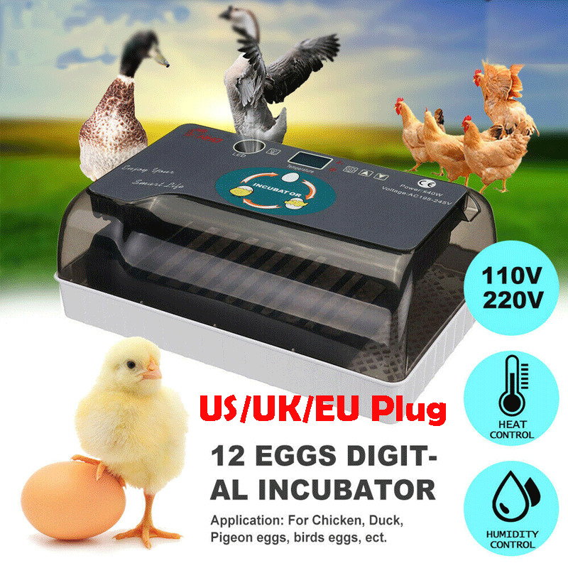 4 35Eggs Incubator LED Fully Automatic Turning Chicken Poultry Egg Ducks Hatcher 12 Small Automatic Incubators