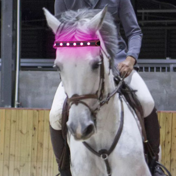 LED Horse Head Straps 3 Luminous Modes Colorful Lighting Equestrian Equipment 24