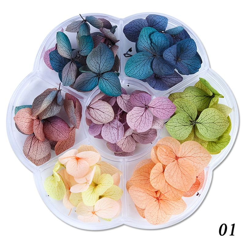 45-50pcs/box Dried Flowers DIY Epoxy Resin Handmade Crafts Filling Materials
