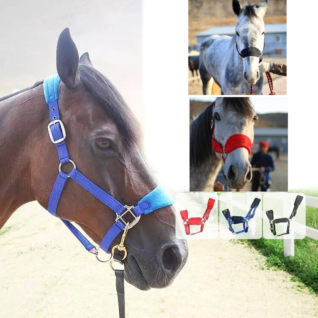 Padded Horse Halter Bridle/Rein - Durable & Comfortable 3