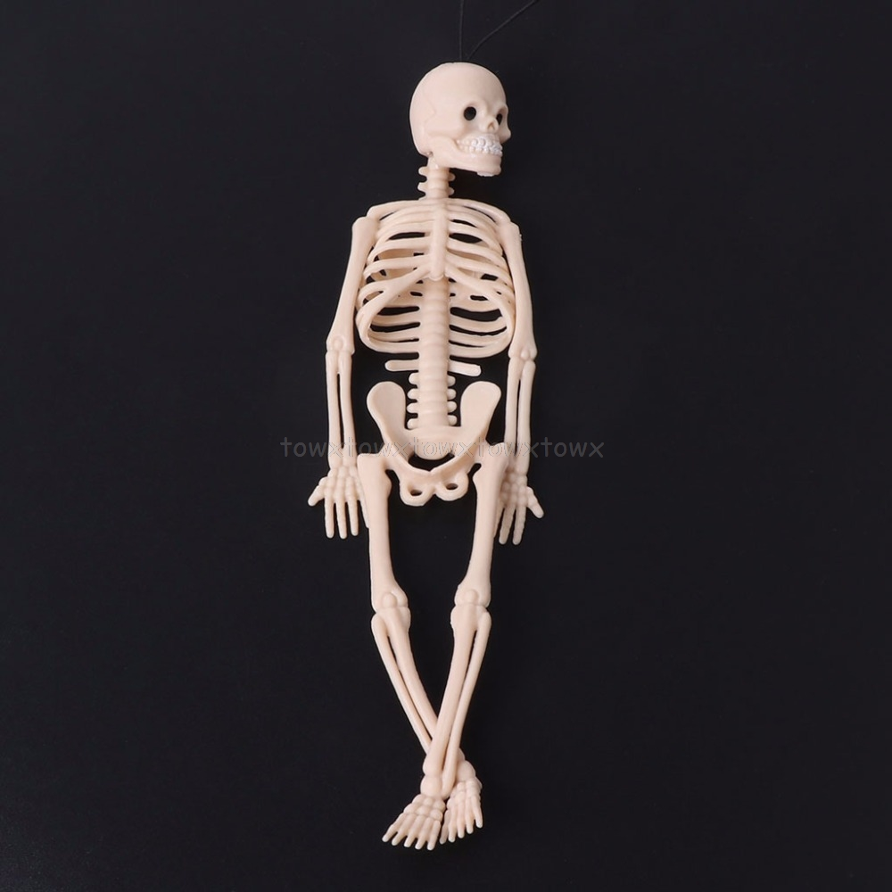 Skeleton Human Model Skull Full Body Mini Figure Toy Phone Hanger Halloween N15 19 Dropship