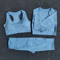 3pcsSetBlue - Women Seamless Yoga Set Fitness Sports Suits