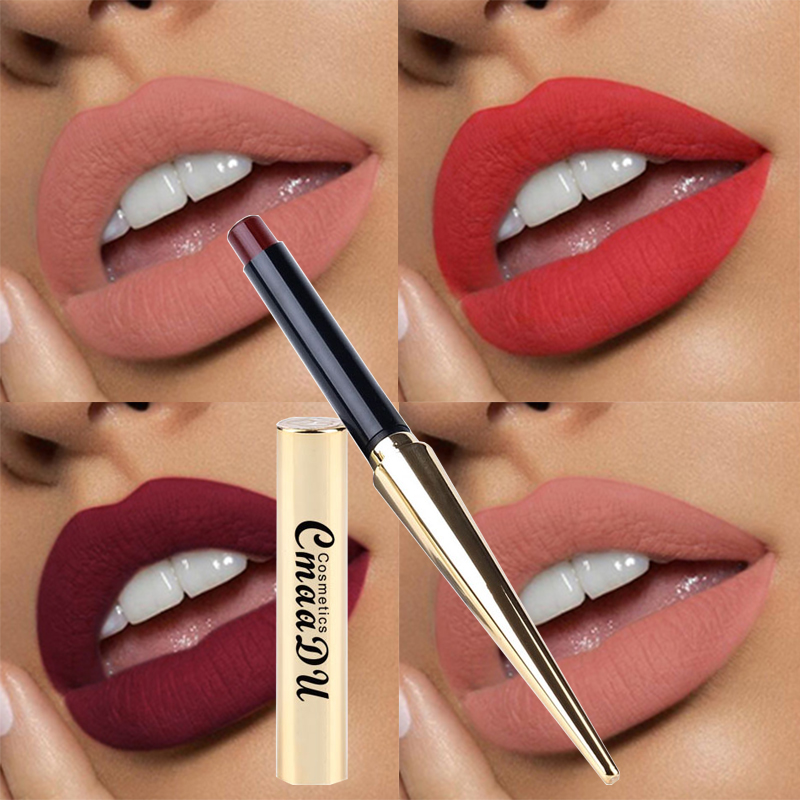 Hot Sales 12 Colors Matte Lipsticks Waterproof Long Lasting Lips Makeup Pigment Nude Sexy Red Lip Tint Matte Lipstick Cosmetic 1