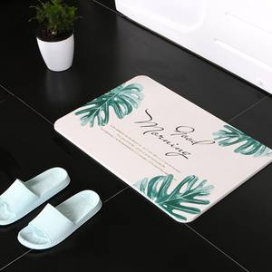 domestic anti-slip diatom blanket bath mat floor mat with fast water absorption,natural diatiom carpet for bathroom kitchen