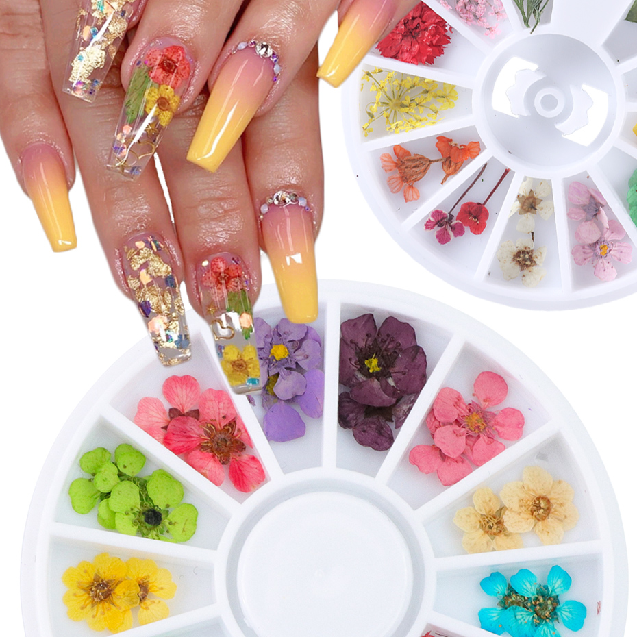24pcs/Wheel 3D Dried Flower Nail Art Decoration Blossom Daisy Floral Leaf Slider Polish Sticker Summer Manicure Tools JIXHD-1