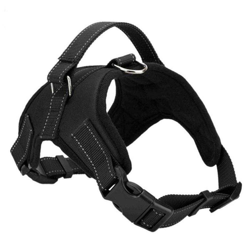 black Harnesses