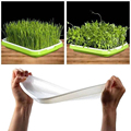 Seed Tray Double-layer Soil Less Culture Beans Hydroponic Nursery Tray Planting Sprout Seedling Tray Garden Supplies Practical