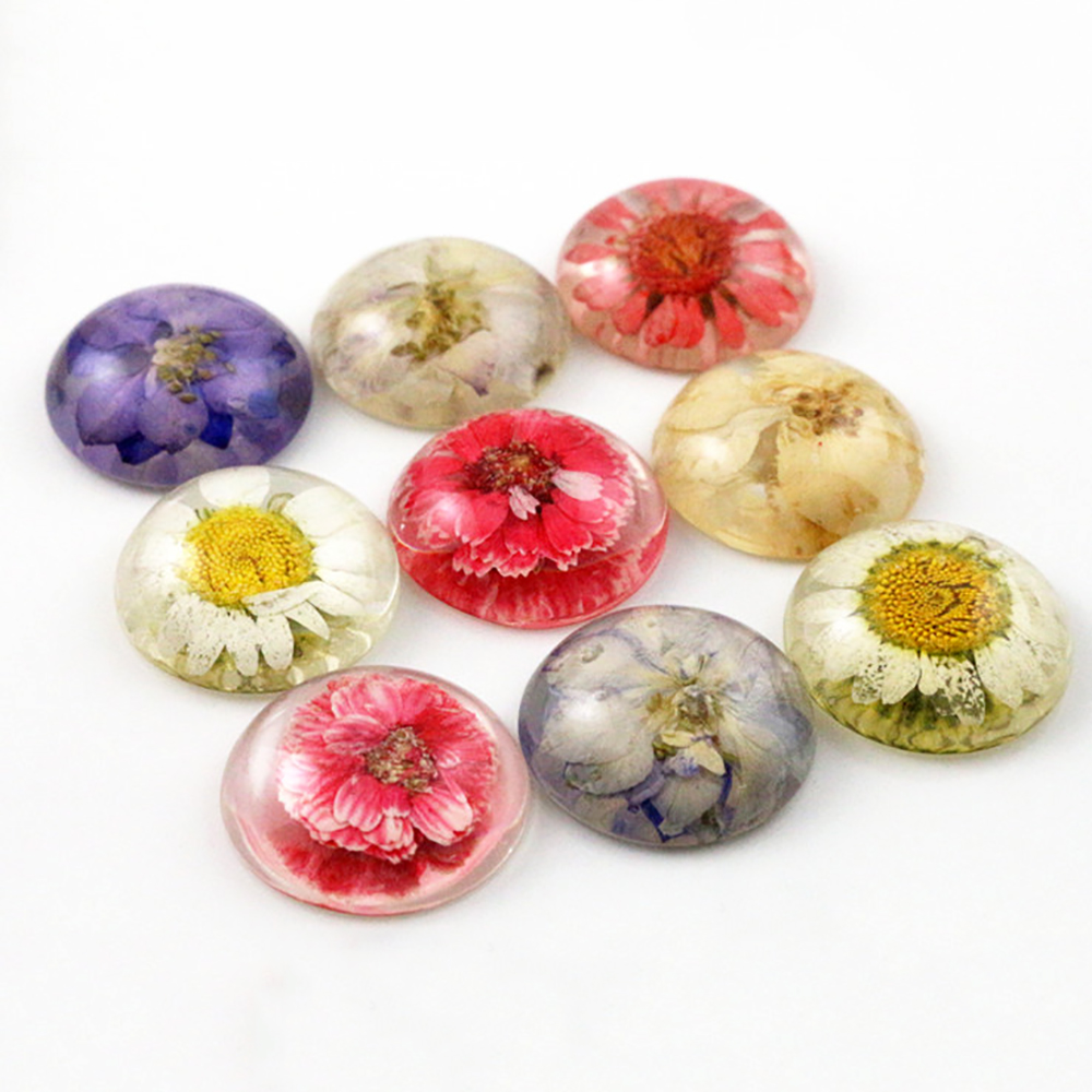 New Fashion 5pcs 25mm Mixed Color Natural Dried Flowers Flat Back Resin Cabochons Cameo  G3-26