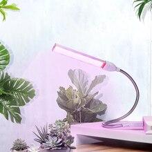 Luz LED portátil USB para cultivo de plantas, DC5V, 3W, 5W, Fito, lámpara de espectro completo, invernadero de interior, flor hidropónica, siembra
