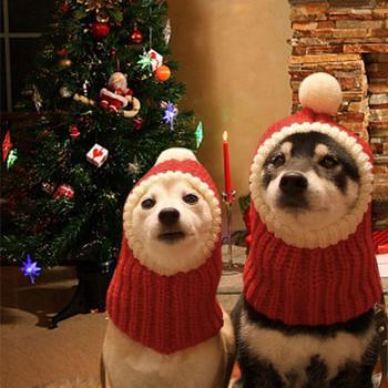 Zabawna świąteczna czapka dla psa czerwona elastyczna akrylowa nakrętka ciepłe szydełkowane Snood zimowe zwierzę dzianiny nakrycia głowy zimowy kot domowy czapki dla psów tanie i dobre opinie Stałe 100 bawełna