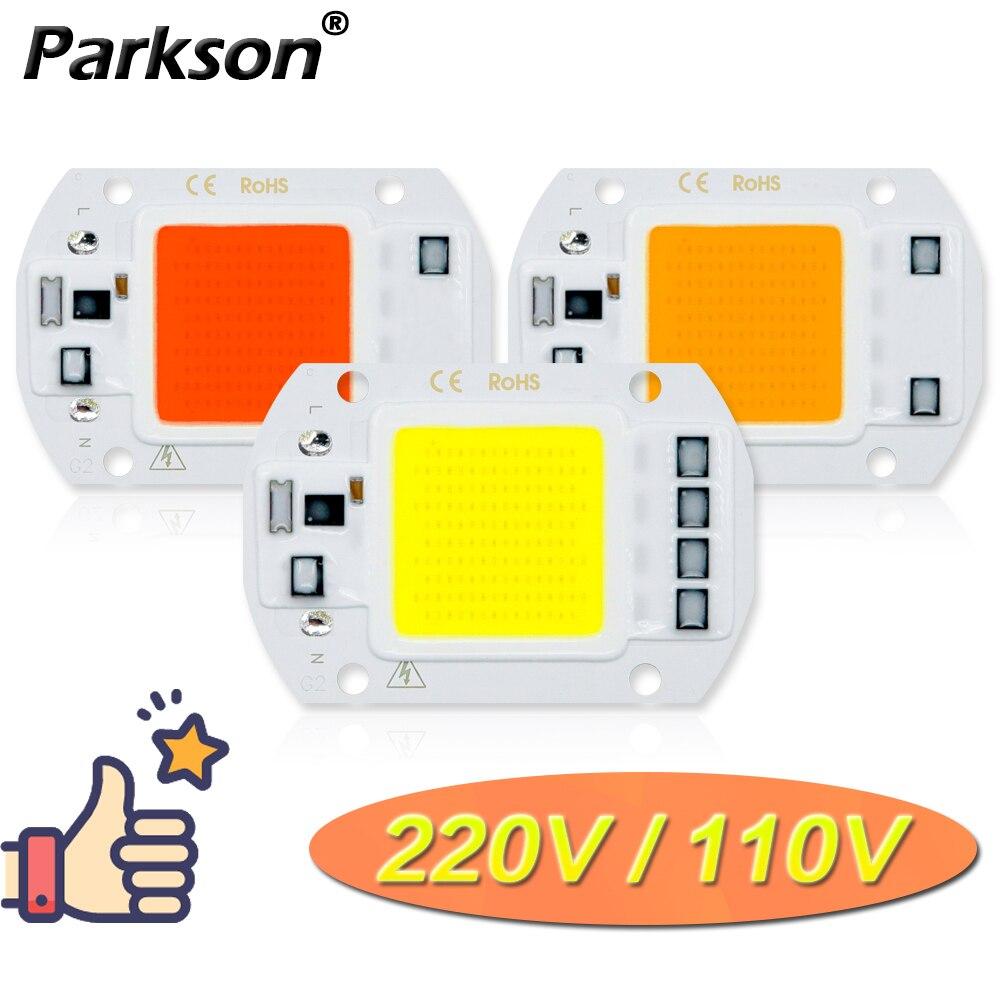 COB LED Lamp 220V 110V 10W 20W 30W 50W LED Bulb Lamp IP65 Real Power Smart IC DIY Flood Light Spotlight Outdoor Chip Lamp