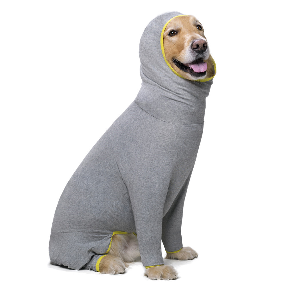 Pet dog costume (19)