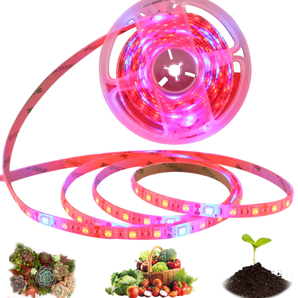 LED Grow Light Strip 5M 300led Full Spectrum Phyto Lamp SMD5050 Red Blue For Plants Flowers Greenhouses Hydroponic Plant Growing