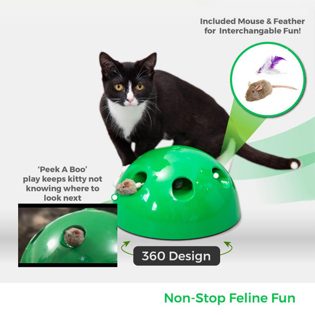 Electric Cat Toy 4