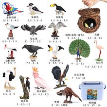 Imitacja zwierzęcia dla dzieci Model zabawkowy ptaki ptaki dzięcioł papuga sowa strusia Flamingo sęp Peregrine sokół Ornament zestaw tanie tanio Adult Adolesce 25-36m 4-6y 7-12y 12 + y 18 + CN (pochodzenie) Unisex NONE AS SHOWN PIERWSZA EDYCJA Wyroby gotowe Birds CHINA