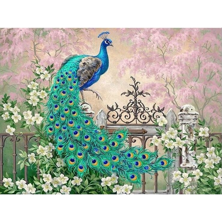 Painting On The Numbers Peacock, 40x50 Cm
