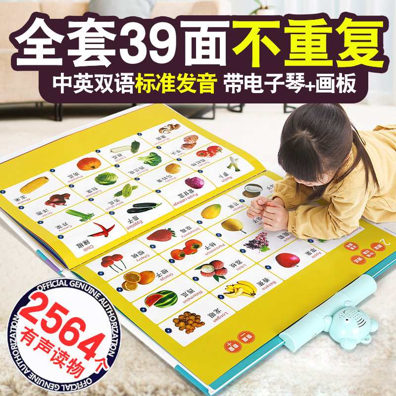CHILDREN'S Toy New Style Voiced Pinyin Letter Wall Chart Rechargeable Educational Electronic Sound Making Chinese Translation Po