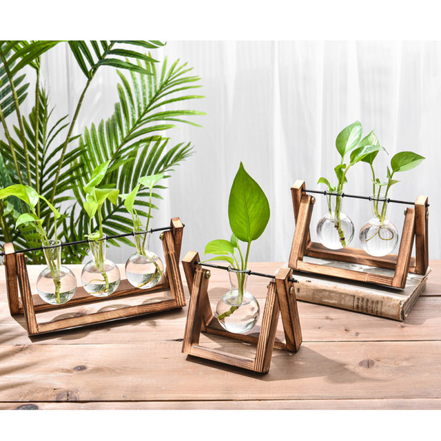 Hydroponic Glass Planter Bulb Vase with Wooden Stand Tray Tabletop Desk Decor Water Planting Propagation Home Decoration BJStore 5
