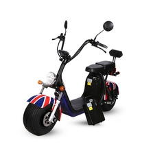 Europe warehouse range 100km EEC/COC/CE Citycoco Electric 1500W 12ah Brushless Fat Bike with Removable Battery