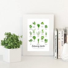 Culinary Herbs Watercolour Painting Art Prints Kids Learning Educational Poster Nature Study Nursery Wall Canvas Painting Decor
