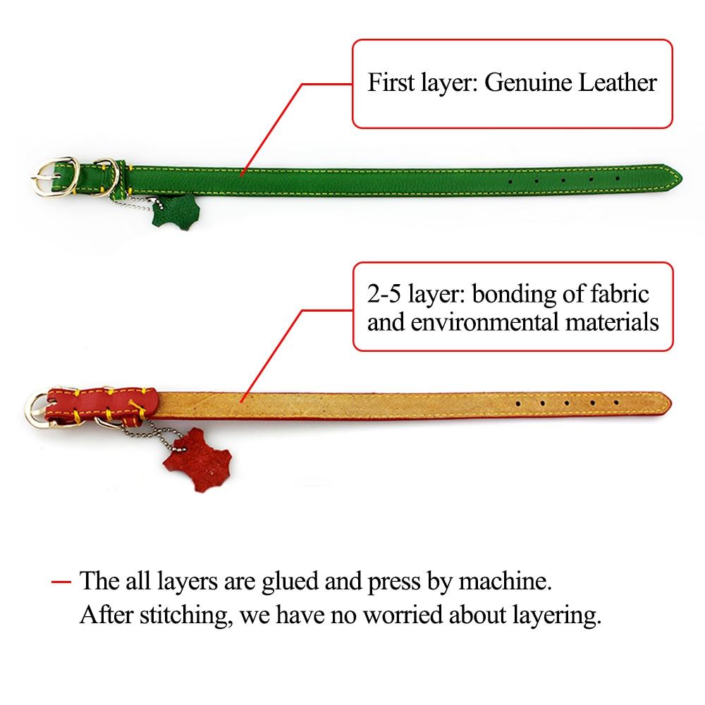 dog genuine leather collar (1)