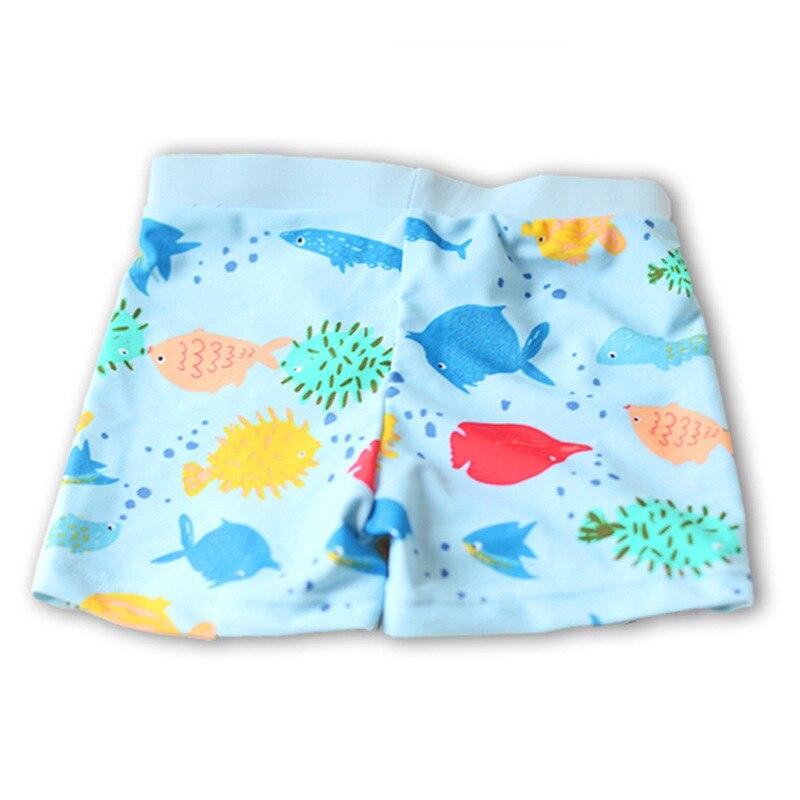 Light Blue Bottom Small Rainbowfish Thin CHILDREN'S Swimming Trunks Cute Boy Infants Small Children Swimming Hot Springs AussieB