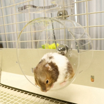 Clear Hamster Running Exercise Wheel Ball Pet Toy For Small Animal Hamster Rat Chinchilla Mice Jogging Training Toy