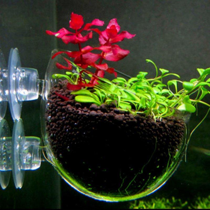 1Pcs Fish Tank Mini Crystal Glass Pot Polka Water Potted Aquatic Planting Cylinder Cup Aquarium Accessories