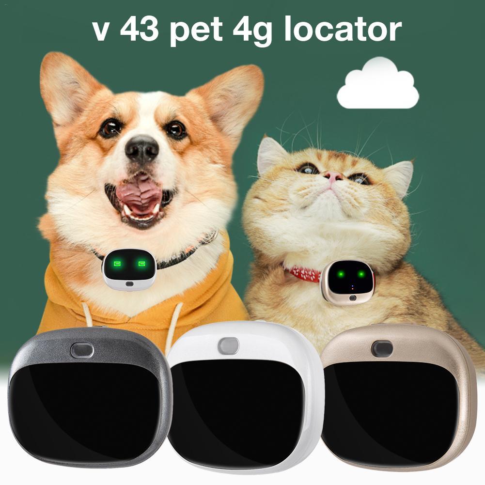 V43 Pet 4G Locator Dog Positioning Anti-lost Device Small Waterproof Positioning Collar GPS Personal Tracker RF-V43 Mini GPS