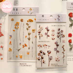 Mr.Paper 12 Designs Natural Daisy Clover Japanese Words Stickers Transparent PET Material Flowers Leaves Plants Deco Stickers
