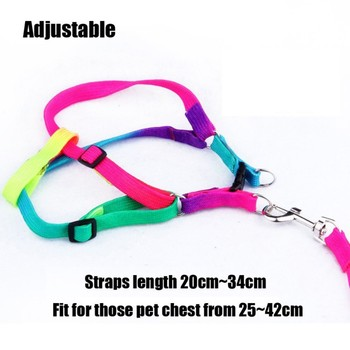 New Pet Harnesses Leads Rainbow Leash Puppy Pet Leash Chest Back Color Dog Leash Traction Rope Harness Medium Harness Vest Pink image