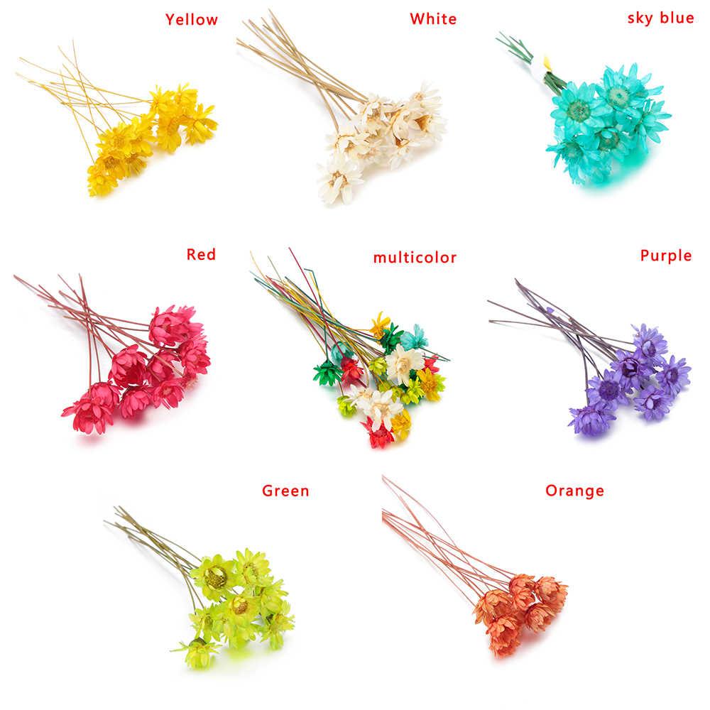 10 piezas de resina hecha a mano estrella brasileña flor seca joyería Fabricación de moldes de silicona materiales de relleno DIY artesanía cristal UV Accesorios
