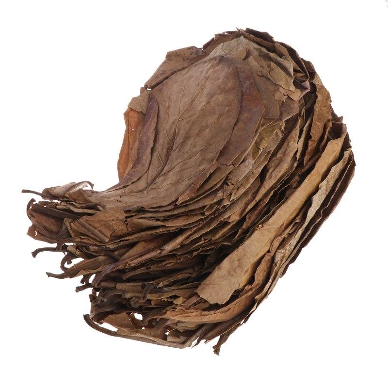 50 шт., очищающие аквариумные листья капаты, миндальных листьев