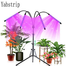 Lâmpadas led de espectro completo, lâmpadas phyto de 5v dc, luz para crescimento de plantas em área interna, para plantas e mudas caixa fitolampy