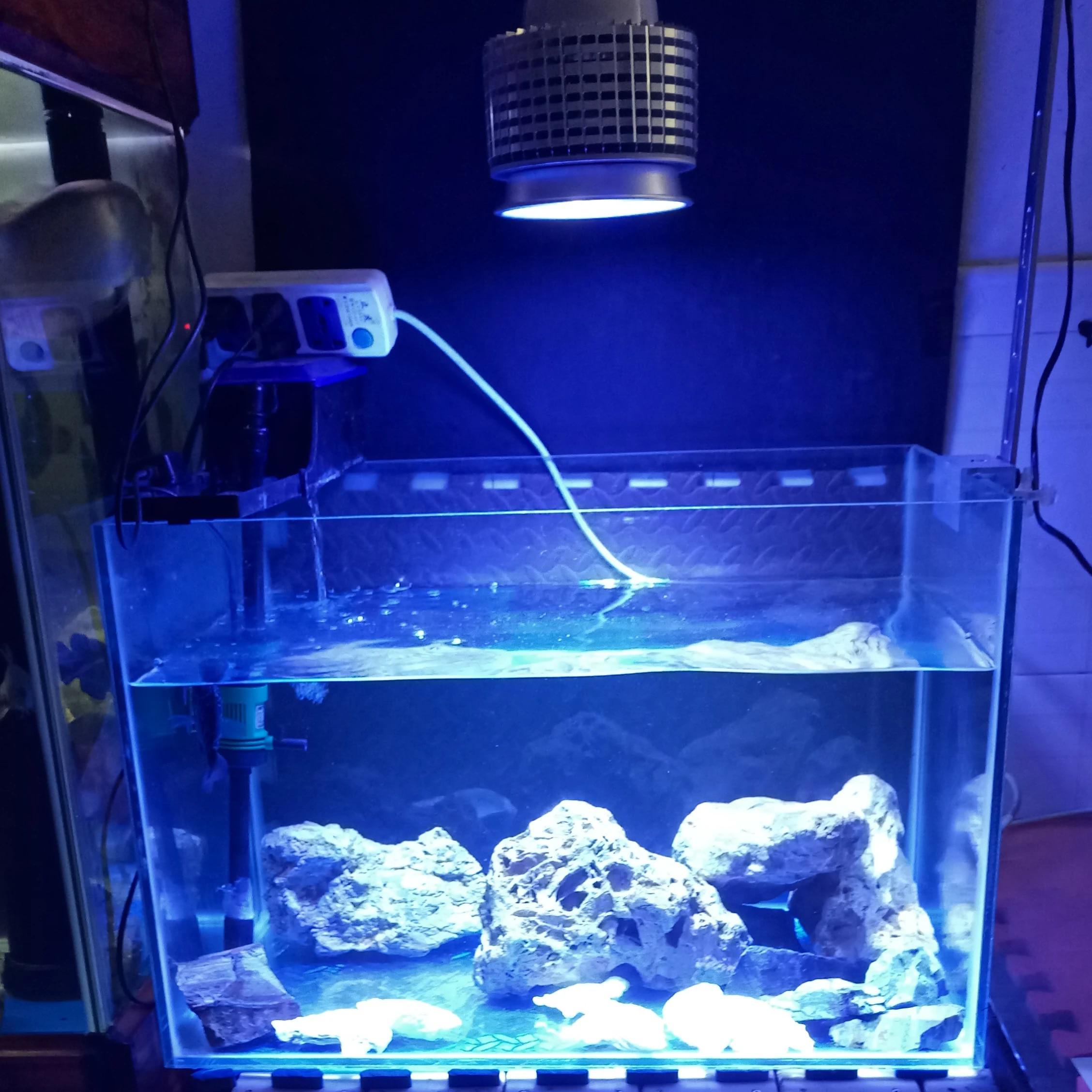 50w led aquarium lighting marine reef light grow bulb for fish coral sps lps plant nano tank