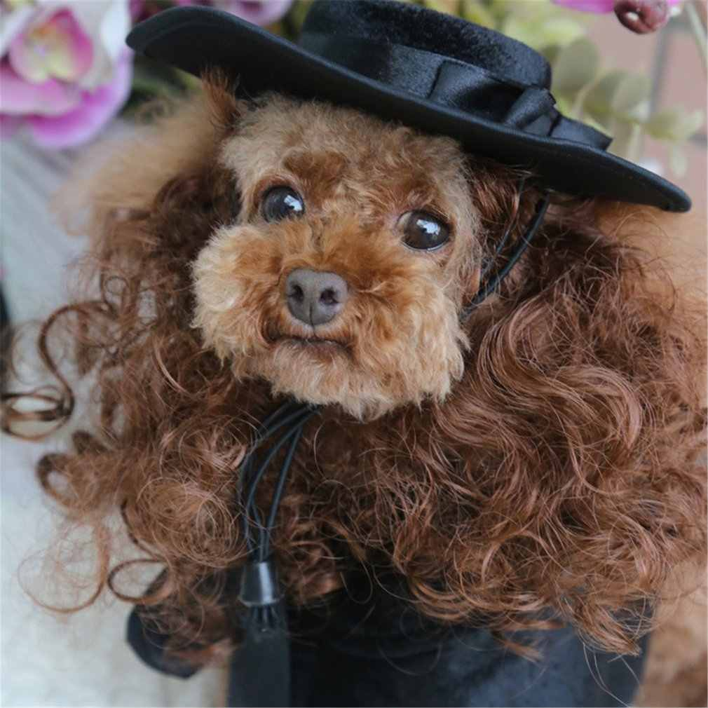 Cat Dog Pet Cloak Costumes Wig Hat French Bulldog Cloaks Mantle Pet Puppy Product Pitbull Christmas Halloween For Cat Supplies