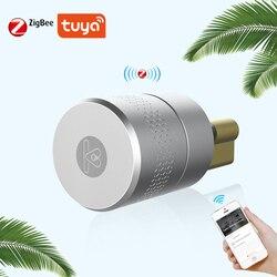 Отпечаток пальца телефон контроль умный замок корпус из нержавеющей стали Блокировка Tuya Блокировка доступа ядро для модификации дверного ...