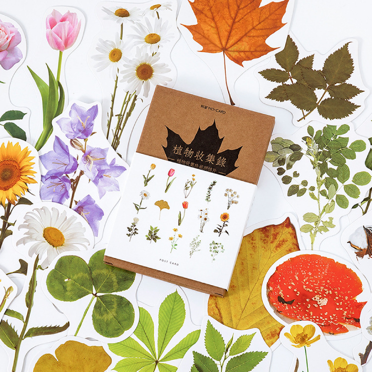 30 Pcs/lot Vintage Plant Flower Collection Series Postcard Set Letter Envelope Greeting Message Cards Gift New Years Postcards